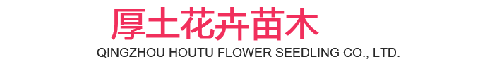 Qingzhou Houtu Flower Seedlings Co., Ltd.